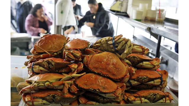 Start of Dungeness crab season coming in January