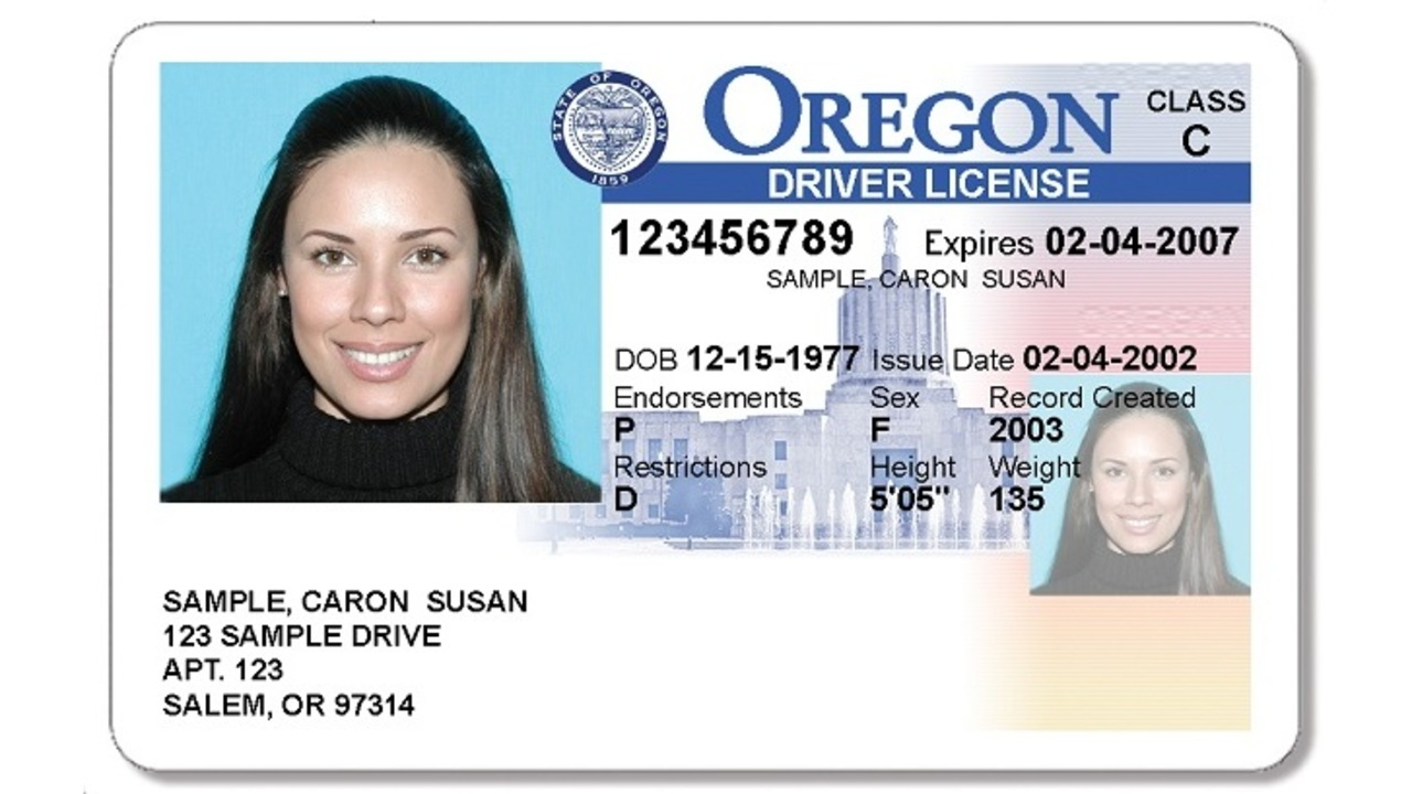 May Immigrants Get Driver's Or Undocumented License