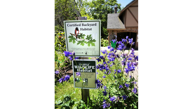 Copyright By KOIN   All Rights Reserved. The Backyard Habitat Certification  ...