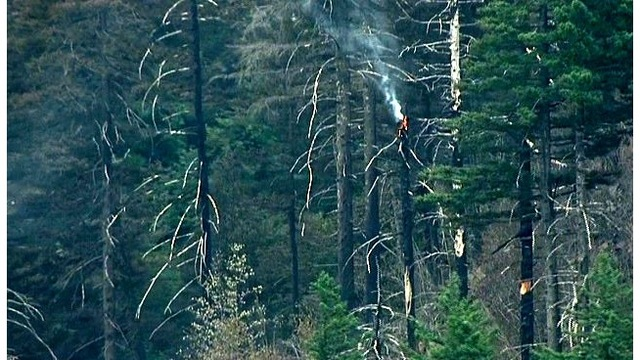 Eagle Creek Fire teen suspect to appear in court