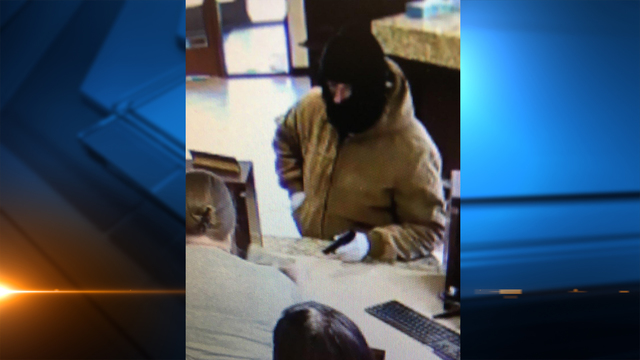 Suspect on the loose after Albany armed bank robbery