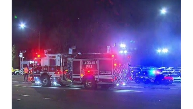 Pedestrian, dog die after being hit by car on 99E