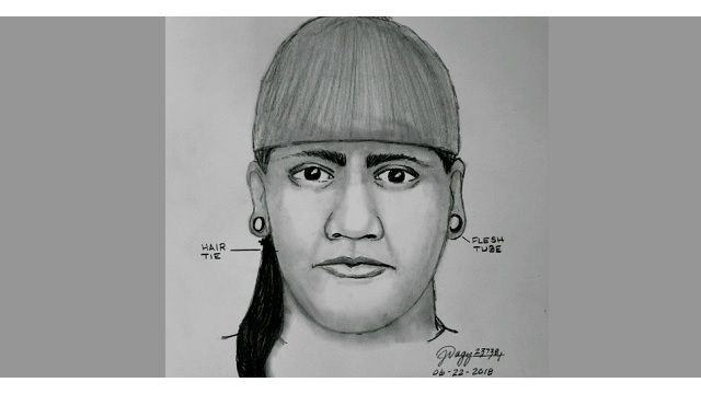 Sketch released of attempted kidnapper in Welches
