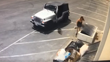 Woman caught on camera dumping puppies in trash